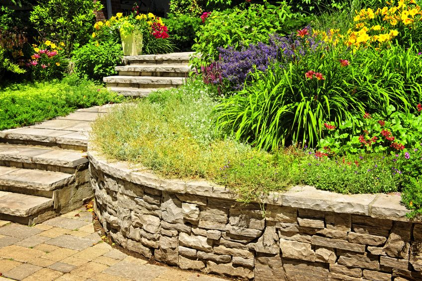 Choose the best plants for your landscaping project for Choosing plants for landscaping